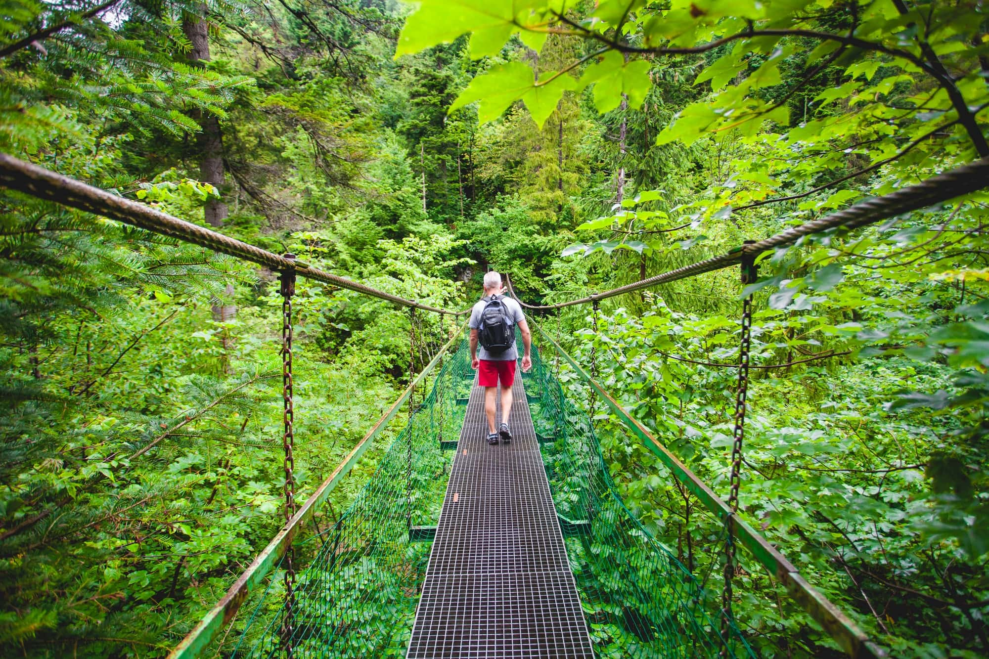 Hiker on the suspension bridge. The Tatras.